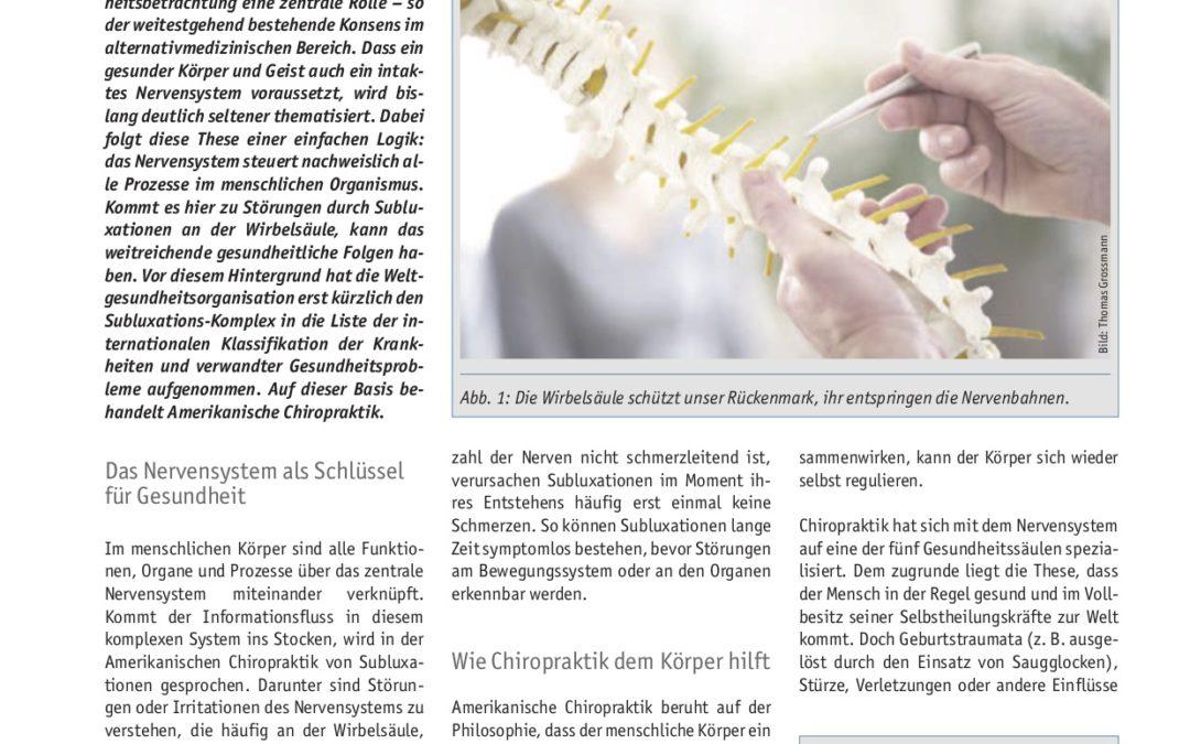 Amerikanische Chiropraktik als ein Baustein ganzheitlicher Gesundheit